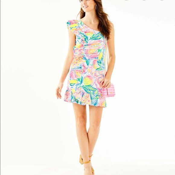 NWT Lilly Pulitzer Tiffani Stretch Dress Size 0